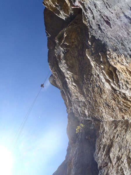 More abseiling fun