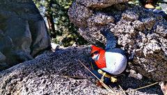 Rock Climbing Photo: ;)