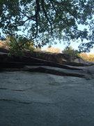 Rock Climbing Photo: T-Dog's Roof