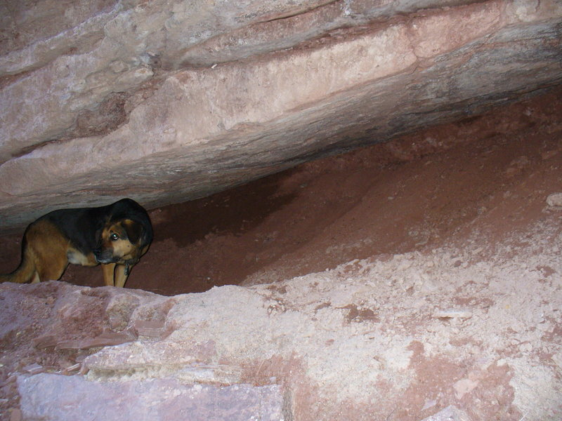Rock Climbing Photo: Oso scopes new routes from his rockfall-safe bivy ...