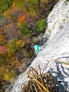 Rock Climbing Photo: The delicately thin layback that is Venom.  Gene m...