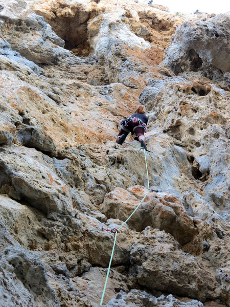 Rock Climbing Photo: Feona crushing 5.7. Look at those SNAPPAS!