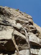 Rock Climbing Photo: Butt shot, Animal world wall?