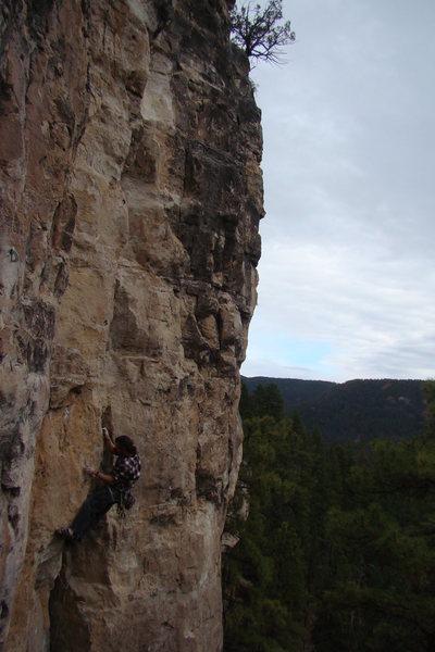 Rock Climbing Photo: Bald/Shaved, 5.10c Sunshine Wall, Spearfish Canyon...