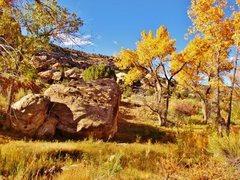 Rock Climbing Photo: Bankfull Boulder southeast-facing side.