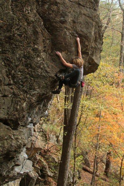 Rock Climbing Photo: lily high stepping