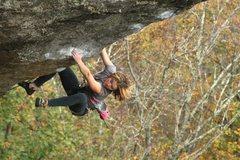 Rock Climbing Photo: looking down on Predator :) Lily