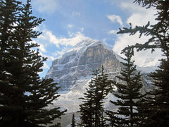 Rock Climbing Photo: Mount Lefroy out of Lake Louise.