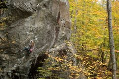 Rock Climbing Photo: lily on a nice autumn evening