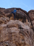 Rock Climbing Photo: The upper crux bulge of Bolt the Planet. Not as ha...