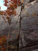 Rock Climbing Photo: October Crack, 5.8