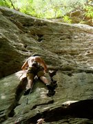 Rock Climbing Photo: Red River Gorge, SAVE THE PMRP!