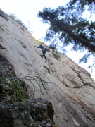 Rock Climbing Photo: Ya delicate quiet living, clinging existence forge...