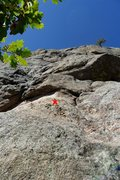Rock Climbing Photo: Amp Right's first bolt. The first pitch goes strai...