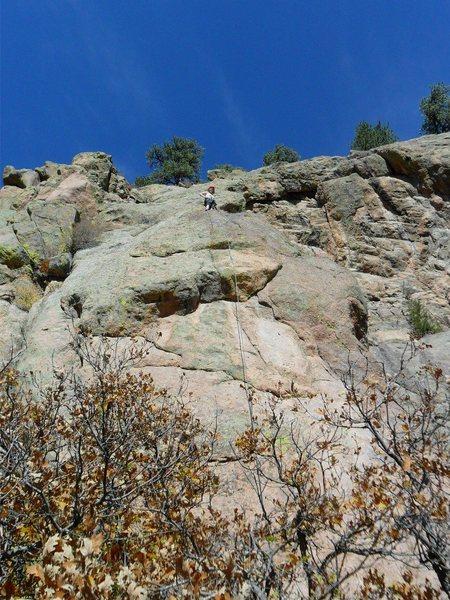 Rock Climbing Photo: Brenda at Midlife Crisis anchors.