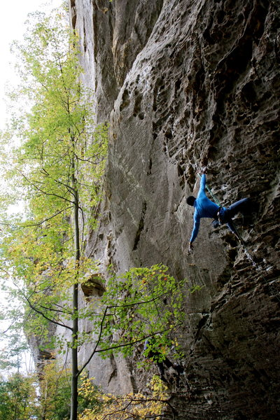 Rock Climbing Photo: Scar tissue (5.12a), Natural Bridge, The Zoo.