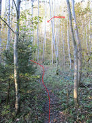 Rock Climbing Photo: You'll know you're on the right trail because thro...