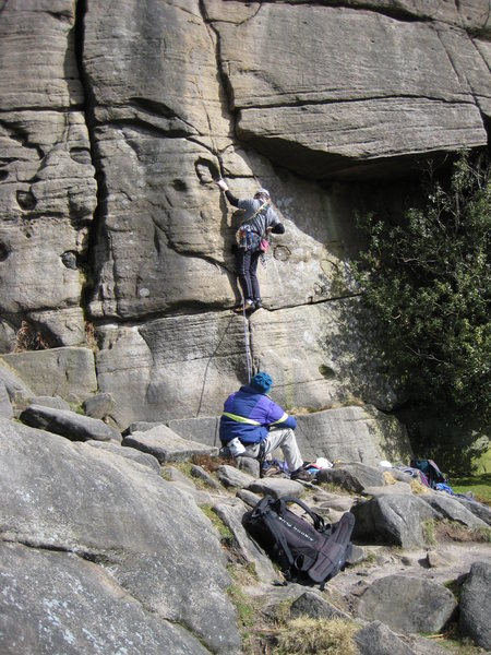 Rock Climbing Photo: The holly-bush is alive and well