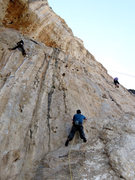 Rock Climbing Photo: Matt Nance checking out the route AND the local Ka...