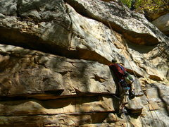 Rock Climbing Photo: Dead Varment