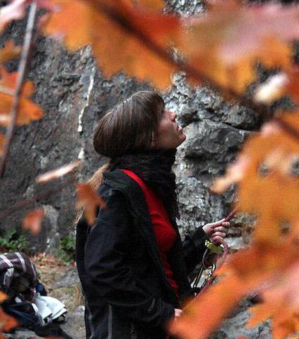 Rock Climbing Photo: Climbing at fucoidal quartz in Logan Canyon