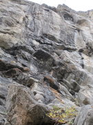 Rock Climbing Photo: Route ascends obvious black streak. Crux at 7th bo...