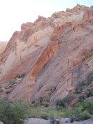 Rock Climbing Photo: Tip Toe Treat arete. Where the steep red wall meet...