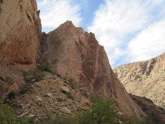 Rock Climbing Photo: Kent cranking.