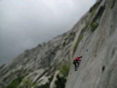 Rock Climbing Photo: This crack makes me feel sentimental. Bushwhack Cr...
