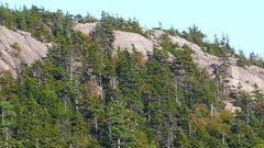 Rock Climbing Photo: Some of the Welch Mt. Crags