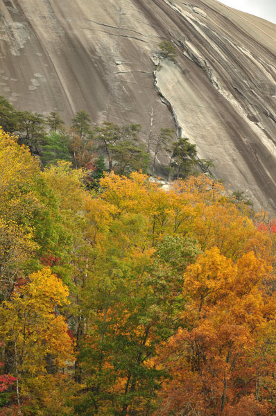 Rock Climbing Photo: 1st pitch corner.