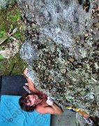 Rock Climbing Photo: Steve Lovelace pulling up Royal Jelly