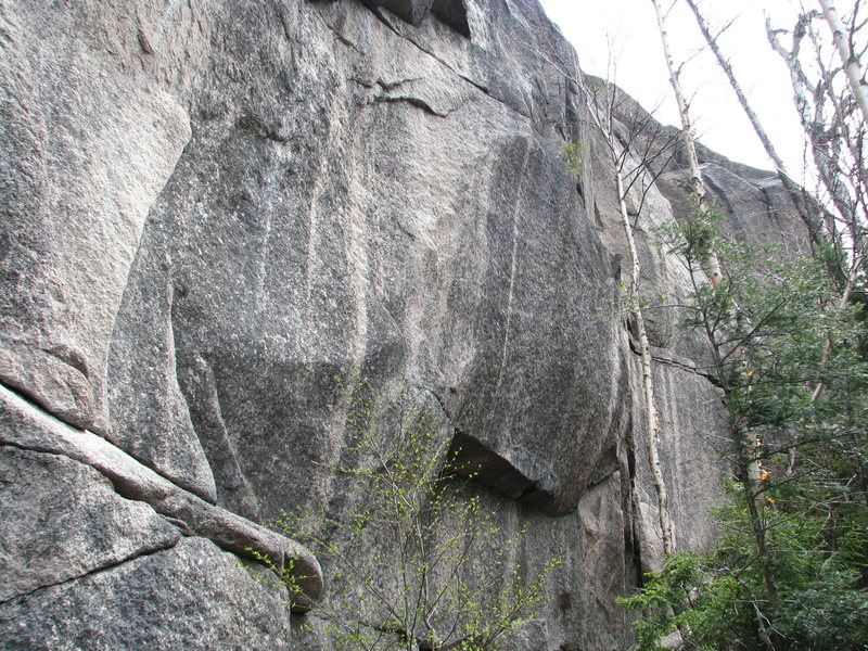 Rock Climbing Photo: Part of the base of the RGC-Open Spaces area. Most...