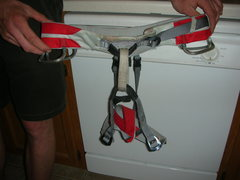 Rock Climbing Photo: BD Xenos Harness