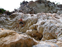 Rock Climbing Photo: The juggy, overhanging start of Dozer Days.