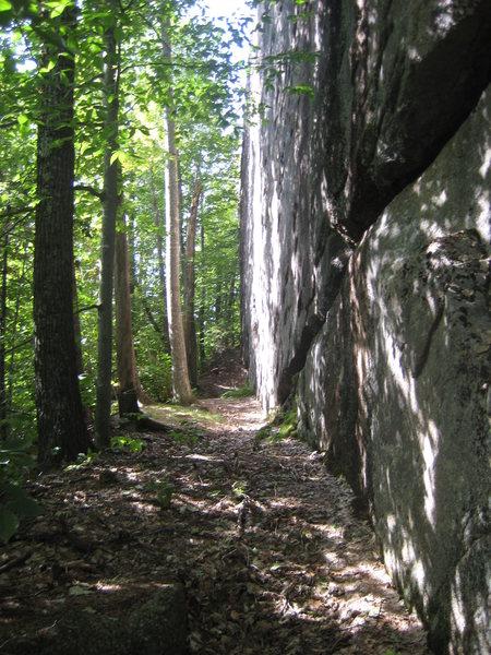 Rock Climbing Photo: Lumberjack Wall