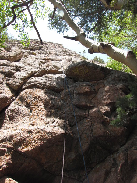 One Hand Clapping:  looking up the climb from the ground (photo by Jerry Inman).