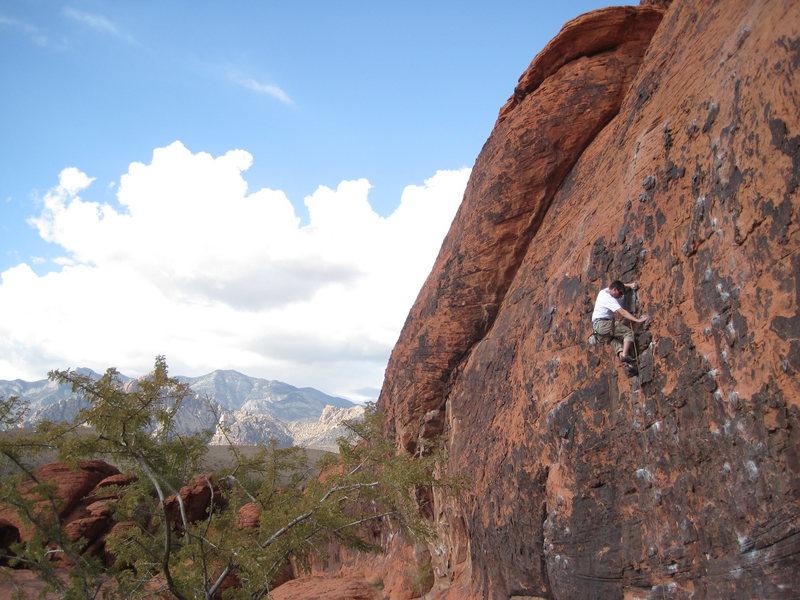 Rock Climbing Photo: Kampe kranking