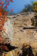 Rock Climbing Photo: Route shot.
