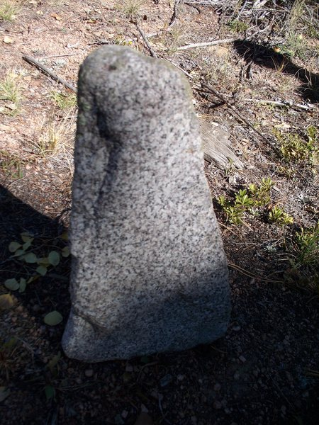 Found this random piece of salt and pepper granite randomly in the middle of the South Platte during a hike. No stone anywhere around there like it. Wtf?