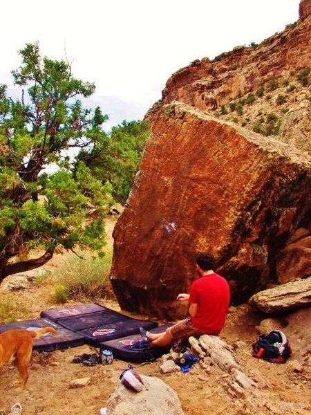 Rock Climbing Photo: Ribbed for Pleasure Boulder.