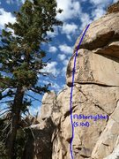 Rock Climbing Photo: Flibbertigibbet (5.10d), Holcomb Valley Pinnacles