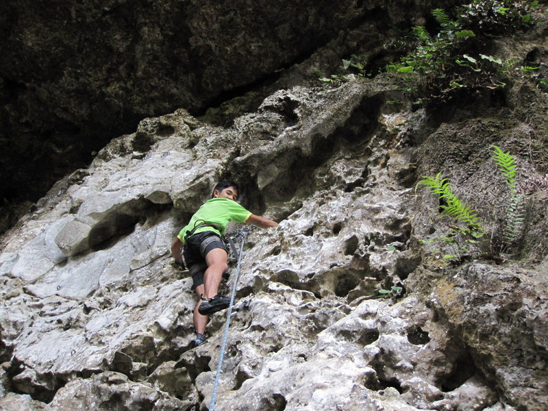 """Rock Climbing Photo: Weh on upper section of """"Baby Climb"""""""