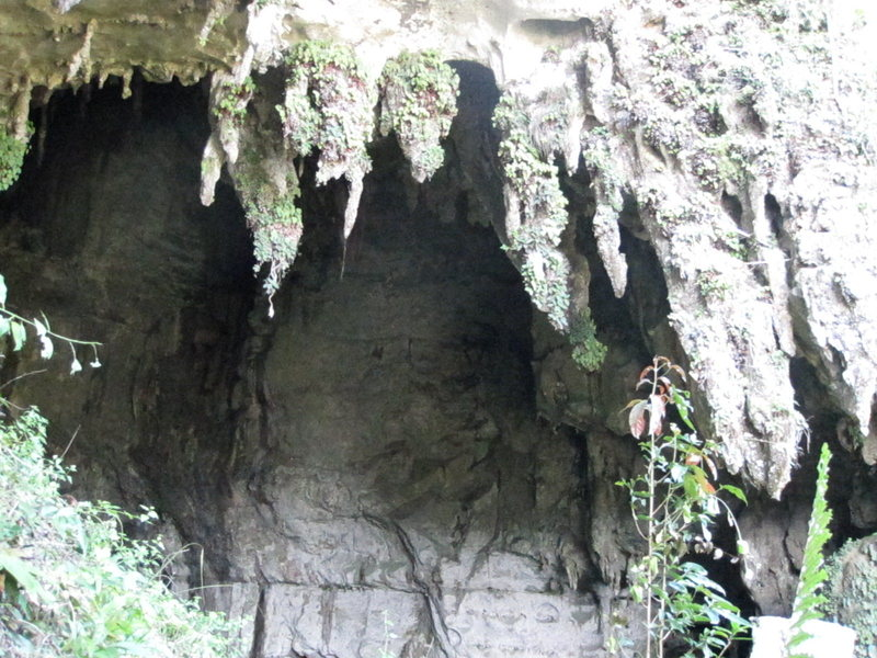 Undeveloped right side next to Nepenthes Wall.
