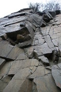 Rock Climbing Photo: rosebud