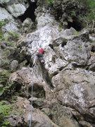 Rock Climbing Photo: Alex on Amy The Last.