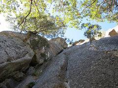 Rock Climbing Photo: A look up the loggerhead ledge route  .