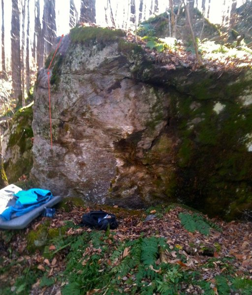 Rock Climbing Photo: Swamplandia