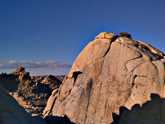 Rock Climbing Photo: Sentinel West Face