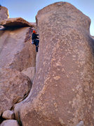 Rock Climbing Photo: Fisticuffs